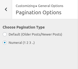 diylite-paginatonoptions