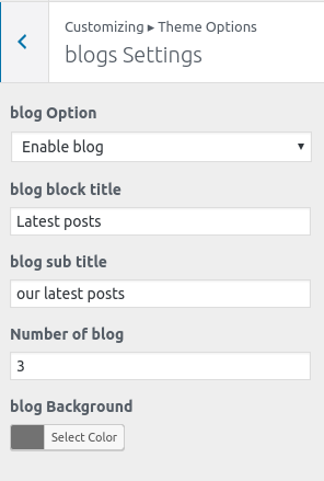 blog-settings-whitish-premium-theme