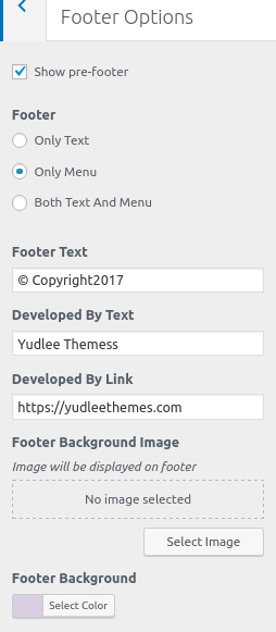 footer-options-whitish-premium-theme