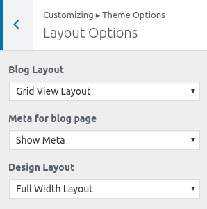layout-options-whitish-premium-theme