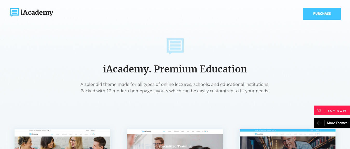 WorPress theme for education