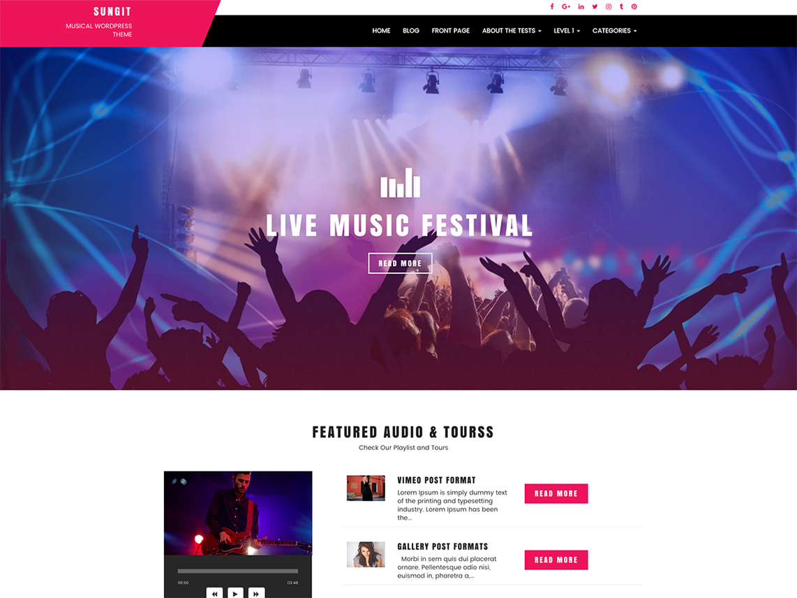 Sungit Lite, Free WordPress themes for musicians