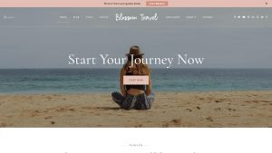 Blossom-Themes-premium-travel- WordPress-themes-Yudleethemes